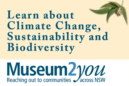 Museum to You logo